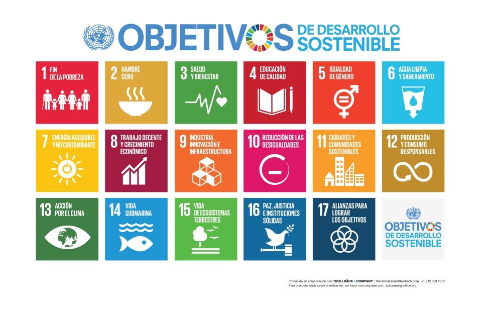 S SDG Poster_-Tabloid
